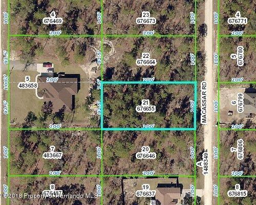 Lot 21 Macassar, Blk 94 Road, Weeki Wachee, FL 34614 (MLS #2190201) :: The Hardy Team - RE/MAX Marketing Specialists