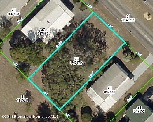 15115 Brookridge Boulevard, Brooksville, FL 34613 (MLS #2190415) :: The Hardy Team - RE/MAX Marketing Specialists