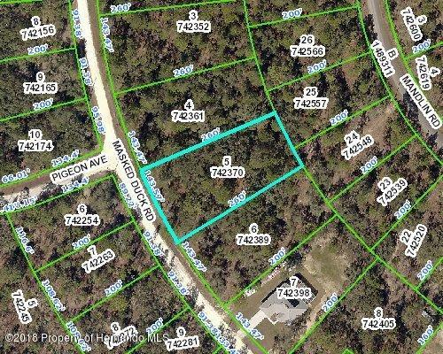 0 Masked Duck Road, Brooksville, FL 34614 (MLS #2190738) :: The Hardy Team - RE/MAX Marketing Specialists