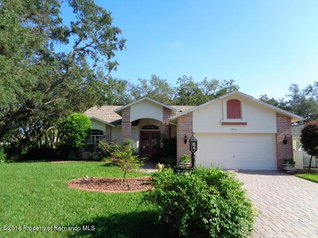 7423 Clearmeadow Drive, Spring Hill, FL 34606 (MLS #2190899) :: The Hardy Team - RE/MAX Marketing Specialists