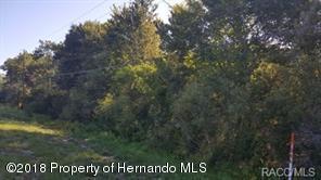 9115 S Suncoast Boulevard, Homosassa, FL 34446 (MLS #2191079) :: The Hardy Team - RE/MAX Marketing Specialists