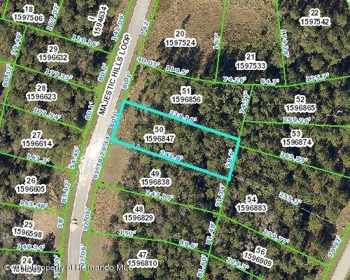 4477 Majestic Hills Loop, Brooksville, FL 34601 (MLS #2191099) :: The Hardy Team - RE/MAX Marketing Specialists
