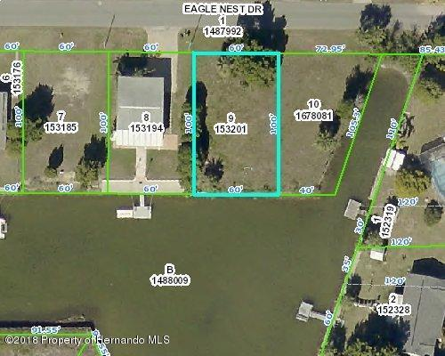 Lot 9 Eagle Nest Drive, Hernando Beach, FL 34607 (MLS #2191305) :: The Hardy Team - RE/MAX Marketing Specialists