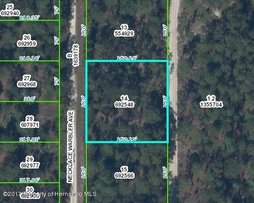 0 Necklace Warbler Avenue, Weeki Wachee, FL 34614 (MLS #2191581) :: The Hardy Team - RE/MAX Marketing Specialists
