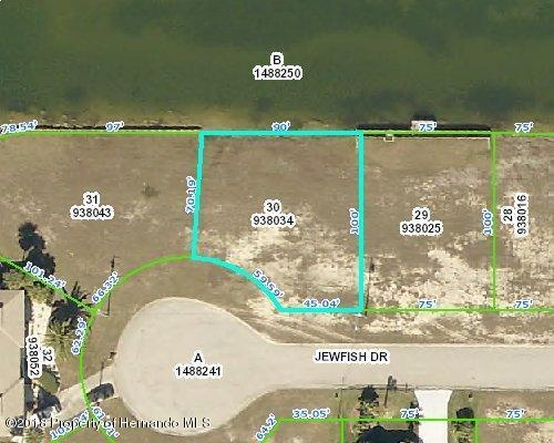 00 Jewfish Drive, Hernando Beach, FL 34607 (MLS #2191814) :: The Hardy Team - RE/MAX Marketing Specialists