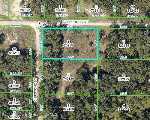 00 Cleft Rock Street, Webster, FL 33597 (MLS #2191848) :: The Hardy Team - RE/MAX Marketing Specialists