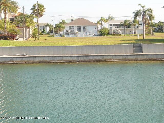 3464 Bluefish Drive, Hernando Beach, FL 34607 (MLS #2192031) :: The Hardy Team - RE/MAX Marketing Specialists