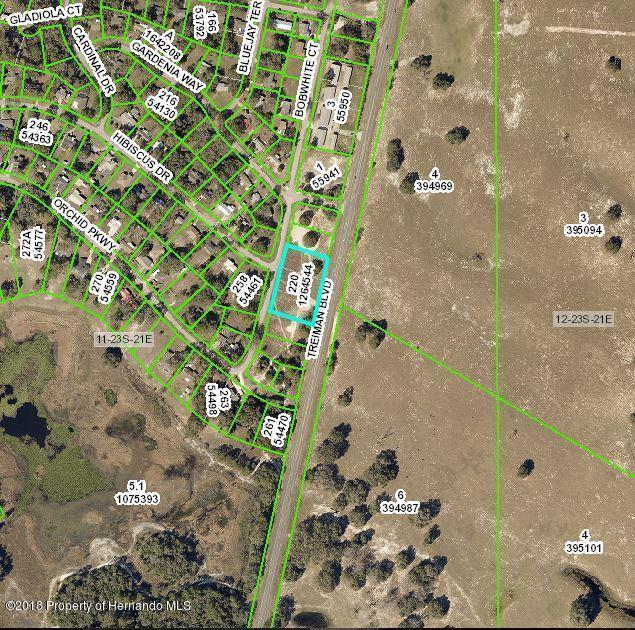 0 Bobwhite Court, Ridge Manor, FL 33523 (MLS #2192227) :: The Hardy Team - RE/MAX Marketing Specialists