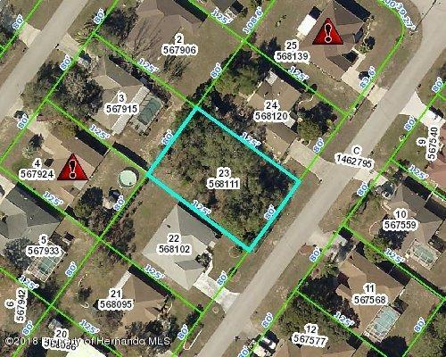 00 Montano Avenue, Spring Hill, FL 34609 (MLS #2192257) :: The Hardy Team - RE/MAX Marketing Specialists
