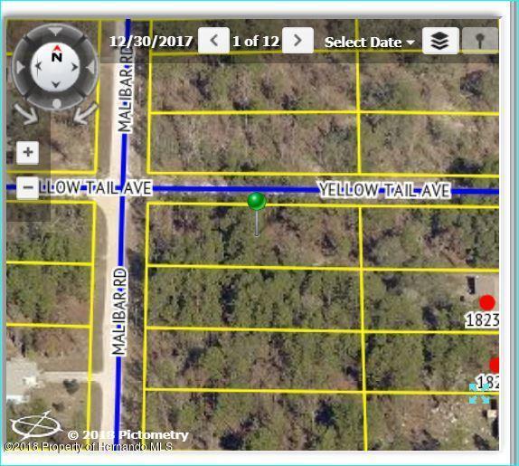 11308 Yellowtail Avenue, Brooksville, FL 34614 (MLS #2192346) :: The Hardy Team - RE/MAX Marketing Specialists