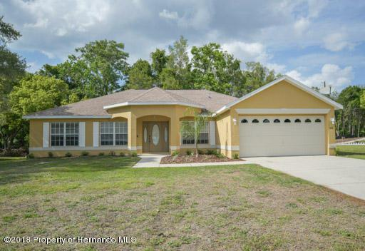 366 Fairbanks Road, Spring Hill, FL 34608 (MLS #2192393) :: The Hardy Team - RE/MAX Marketing Specialists