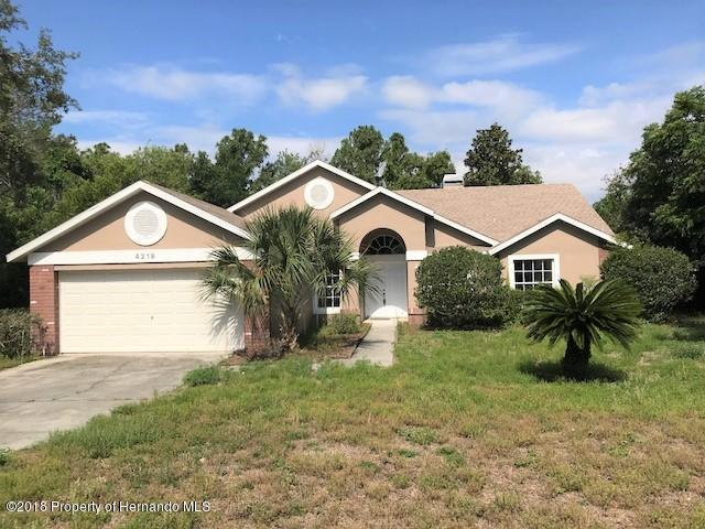 4219 Newton Road, Spring Hill, FL 34606 (MLS #2192562) :: The Hardy Team - RE/MAX Marketing Specialists