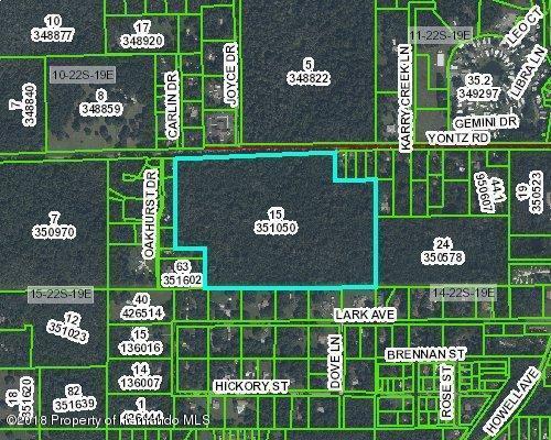 0 Yontz Road, Brooksville, FL 34601 (MLS #2192564) :: The Hardy Team - RE/MAX Marketing Specialists