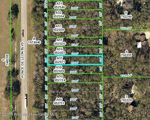 0 Ponce De Leon Boulevard, Brooksville, FL 34601 (MLS #2192601) :: The Hardy Team - RE/MAX Marketing Specialists
