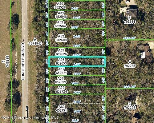0 Ponce De Leon Boulevard, Brooksville, FL 34601 (MLS #2192602) :: The Hardy Team - RE/MAX Marketing Specialists