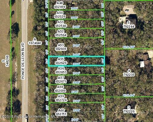 0 Ponce De Leon Boulevard, Brooksville, FL 34601 (MLS #2192605) :: The Hardy Team - RE/MAX Marketing Specialists