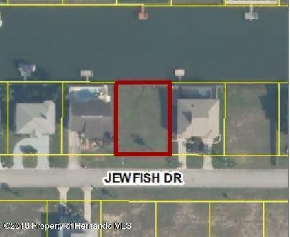 4017 Jewfish Drive, Hernando Beach, FL 34607 (MLS #2192654) :: The Hardy Team - RE/MAX Marketing Specialists