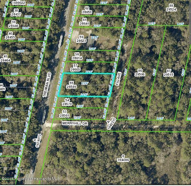 0 Fig Avenue, Webster, FL 33597 (MLS #2192881) :: The Hardy Team - RE/MAX Marketing Specialists