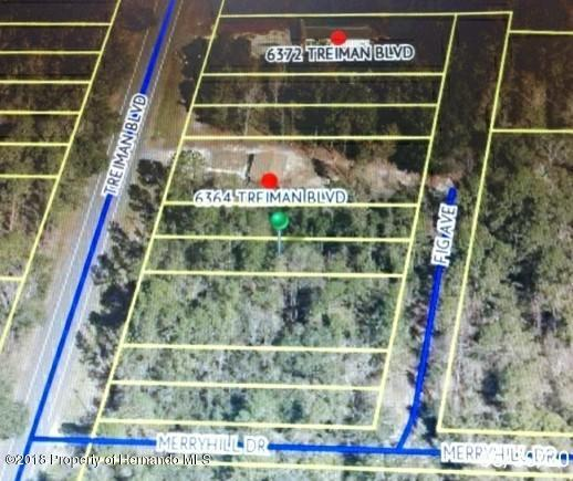 0 Fig Avenue, Webster, FL 33597 (MLS #2192896) :: The Hardy Team - RE/MAX Marketing Specialists