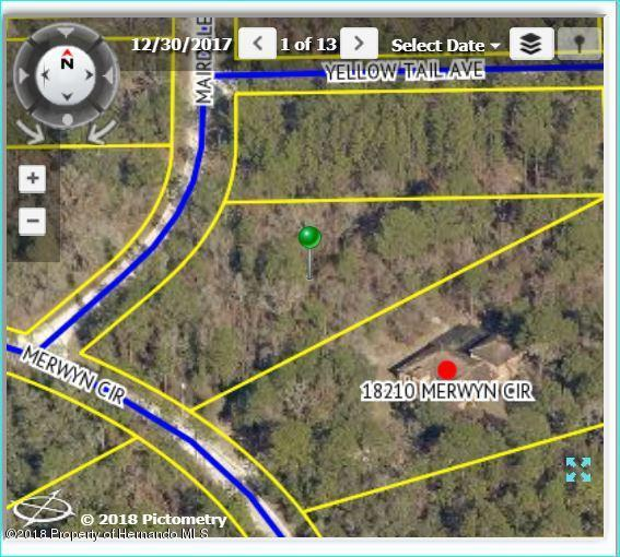 18230 Mairdale Road, Brooksville, FL 34614 (MLS #2192917) :: The Hardy Team - RE/MAX Marketing Specialists