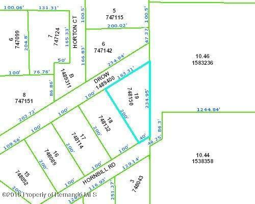 13081 Hornbill Road, Weeki Wachee, FL 34614 (MLS #2193024) :: The Hardy Team - RE/MAX Marketing Specialists