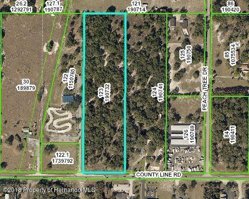 Lot 123 County Line Road, Spring Hill, FL 34608 (MLS #2193100) :: The Hardy Team - RE/MAX Marketing Specialists