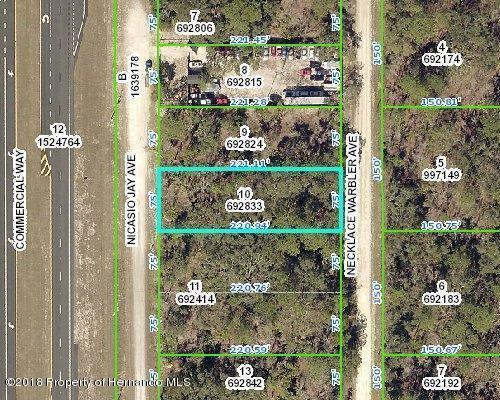 00 Necklace Warbler Avenue, Weeki Wachee, FL 34614 (MLS #2193115) :: The Hardy Team - RE/MAX Marketing Specialists