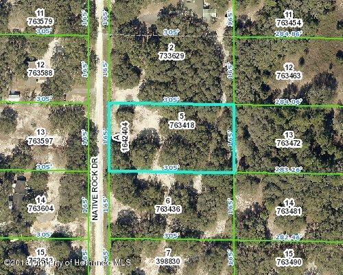 0 Native Rock Dr, Ridge Manor, FL 33523 (MLS #2193165) :: The Hardy Team - RE/MAX Marketing Specialists