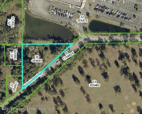 0 Buck Hope Road, Brooksville, FL 34601 (MLS #2193303) :: The Hardy Team - RE/MAX Marketing Specialists