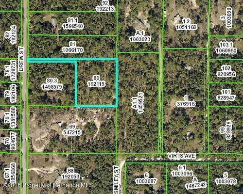 2.5 Acres Drew Street, Spring Hill, FL 34604 (MLS #2193349) :: The Hardy Team - RE/MAX Marketing Specialists