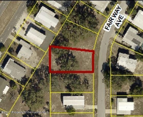 0 Fairway Avenue, Brooksville, FL 34613 (MLS #2193380) :: The Hardy Team - RE/MAX Marketing Specialists