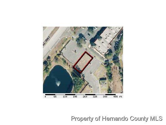 00 Forest Road Lot A, Spring Hill, FL 34606 (MLS #2193859) :: The Hardy Team - RE/MAX Marketing Specialists