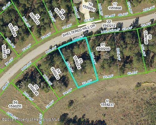 00 Sheltered Hill Drive, Brooksville, FL 34601 (MLS #2193872) :: The Hardy Team - RE/MAX Marketing Specialists