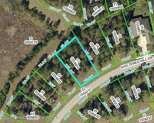 00 Sheltered Hill Drive, Brooksville, FL 34601 (MLS #2193895) :: The Hardy Team - RE/MAX Marketing Specialists
