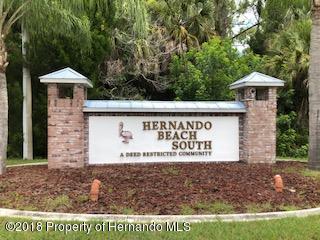 0 Bluefish Drive, Hernando Beach, FL 34607 (MLS #2193909) :: The Hardy Team - RE/MAX Marketing Specialists