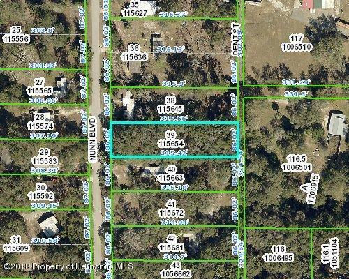 0 Nunn Boulevard, Brooksville, FL 34601 (MLS #2193912) :: The Hardy Team - RE/MAX Marketing Specialists