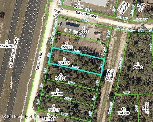 0 Nicasio Road, Weeki Wachee, FL 34613 (MLS #2193941) :: The Hardy Team - RE/MAX Marketing Specialists