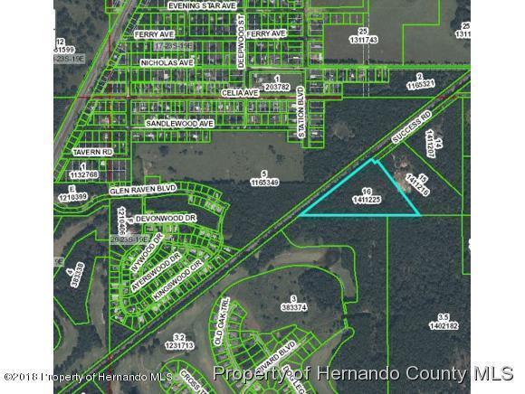 0 Success Road, Brooksville, FL 34604 (MLS #2194151) :: The Hardy Team - RE/MAX Marketing Specialists