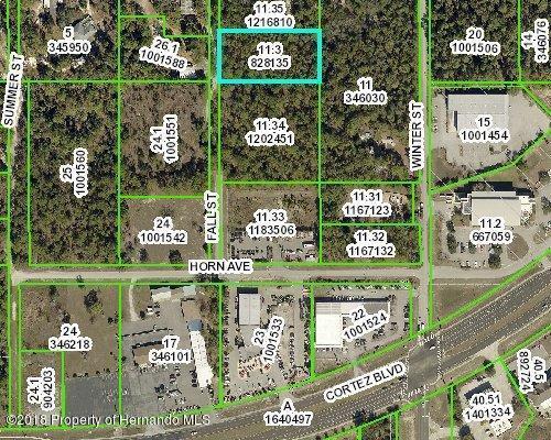 0 Fall Street, Brooksville, FL 34613 (MLS #2194402) :: The Hardy Team - RE/MAX Marketing Specialists