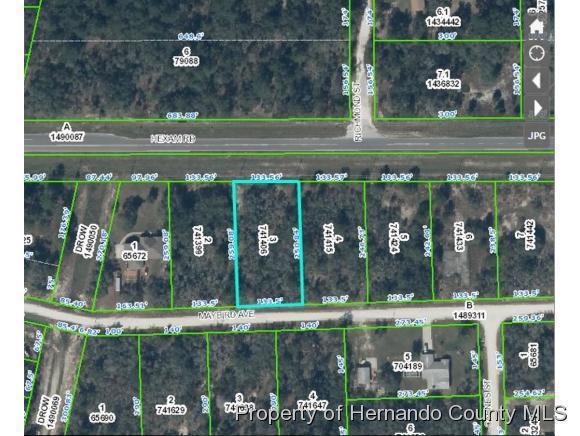 0 Maybird Avenue, Weeki Wachee, FL 34613 (MLS #2194446) :: The Hardy Team - RE/MAX Marketing Specialists