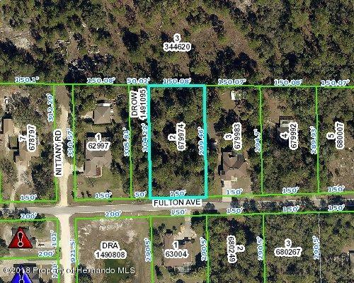 0 Fulton Avenue, Weeki Wachee, FL 34613 (MLS #2194695) :: The Hardy Team - RE/MAX Marketing Specialists