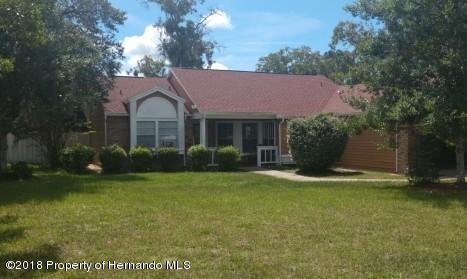 13410 Maureen Avenue, Spring Hill, FL 34609 (MLS #2194825) :: The Hardy Team - RE/MAX Marketing Specialists