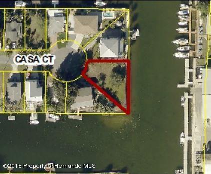 0 Casa Court, Hernando Beach, FL 34607 (MLS #2194901) :: The Hardy Team - RE/MAX Marketing Specialists