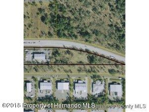 15252 Spring Hill Dr., Brooksville, FL 34604 (MLS #2194936) :: The Hardy Team - RE/MAX Marketing Specialists
