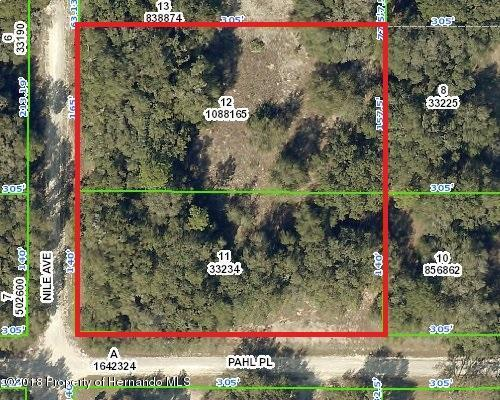 0 Nile Avenue, Webster, FL 33597 (MLS #2195084) :: The Hardy Team - RE/MAX Marketing Specialists
