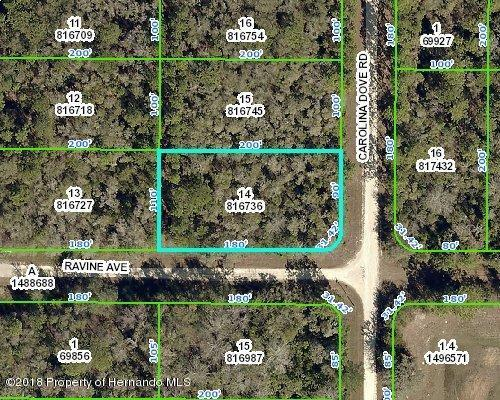 0 Ravine Avenue, Weeki Wachee, FL 34614 (MLS #2195162) :: The Hardy Team - RE/MAX Marketing Specialists