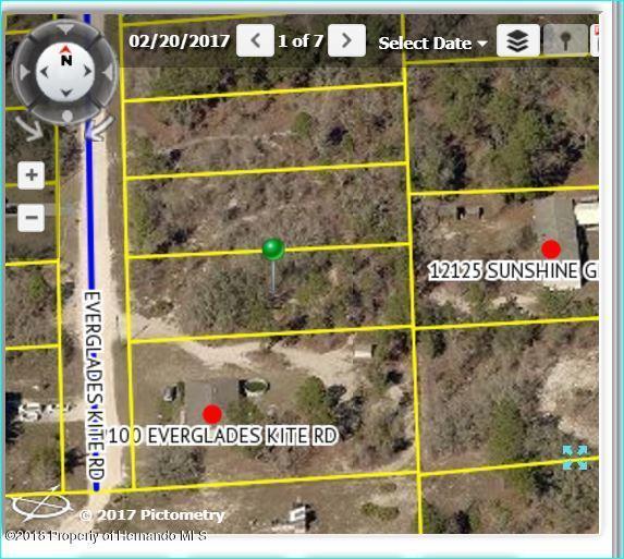 12106 Everglades Kite Road, Brooksville, FL 34614 (MLS #2195754) :: The Hardy Team - RE/MAX Marketing Specialists