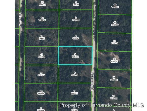 0 Glenchester Drive, Webster, FL 33597 (MLS #2195755) :: The Hardy Team - RE/MAX Marketing Specialists