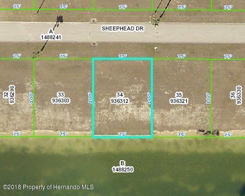 3424 Sheephead Drive, Hernando Beach, FL 34607 (MLS #2195786) :: The Hardy Team - RE/MAX Marketing Specialists