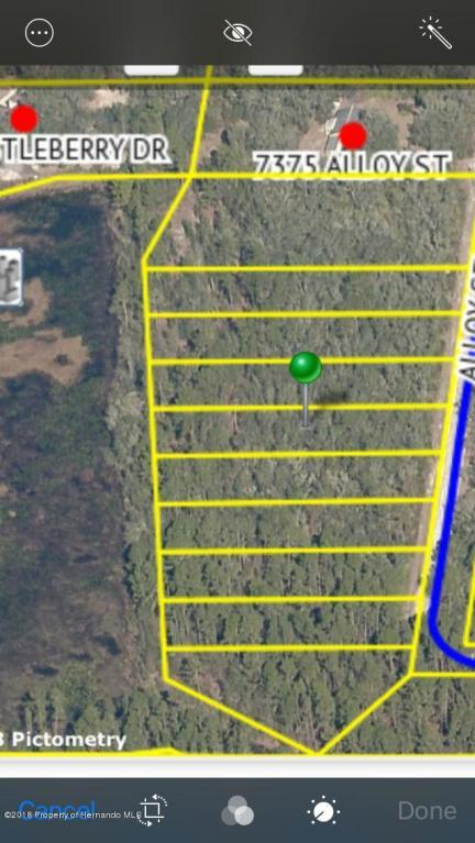 00 Alloy Street, Webster, FL 33597 (MLS #2195814) :: The Hardy Team - RE/MAX Marketing Specialists